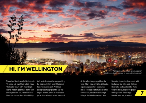Runner's Guide to Wellington: Second Edition