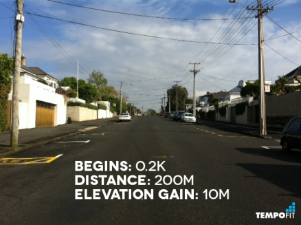 Auckland Marathon Hill 1