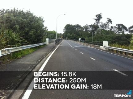 Auckland Marathon Hill 10