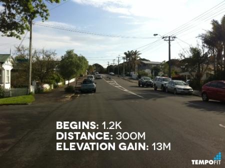 Auckland Marathon Hill 3