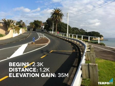 Auckland Marathon Hill 4