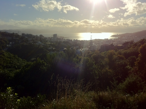 The rewarding view from Polhill Reserve.