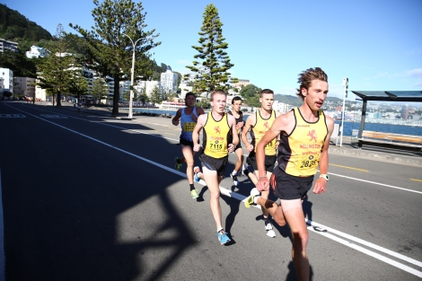 Wellington Round the Bays workouts
